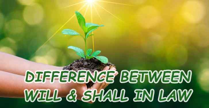 DIFFERENCE BETWEEN WILL & SHALL IN LAW