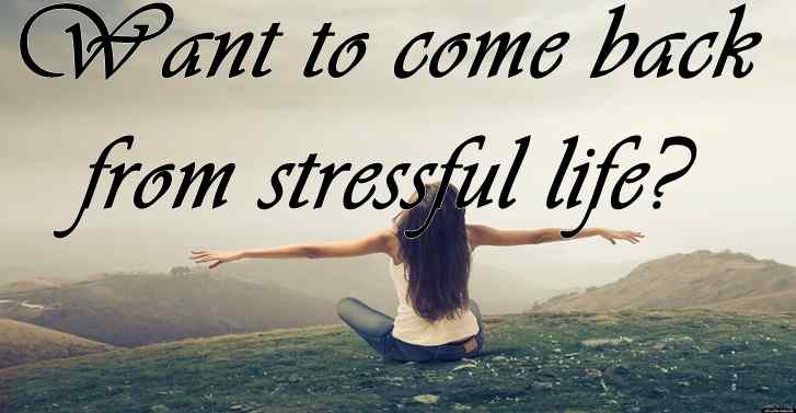 Want to come back from stressful life?