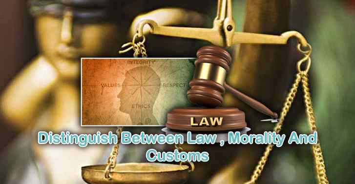 Distinguish Between Law , Morality And Customs