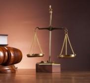 Advocate Advocate Fauzia