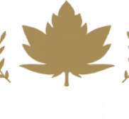 Attorney Lillian Audu, International Trade attorney in Sugar Land - Sugar Land