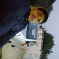 Advocate sumit kumar, Lawyer in Bihar - Samastipur (near Teghra)